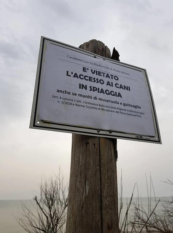 Cartello testé esposto a Lido di Dante dai Carabinieri-2
