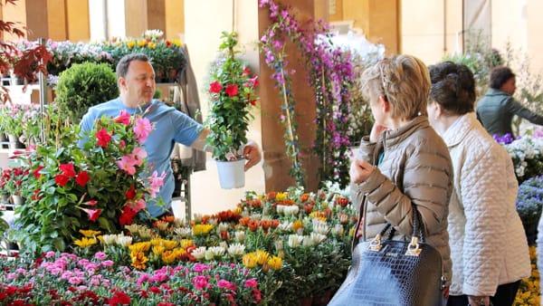 Lugo Garden Festival: torna la mostra mercato sul giardinaggio