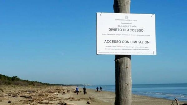 divieto-accesso-spiaggia-fratino-3