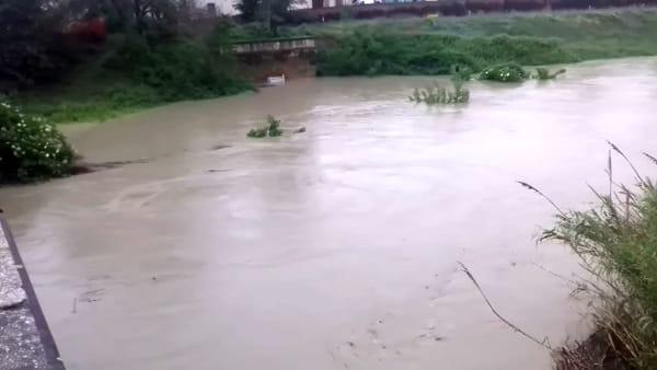 La pioggia fa innalzare il livello dei fiumi: la situazione del Lamone - VIDEO