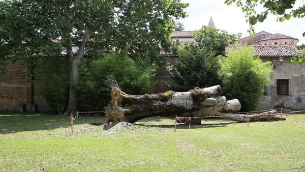 Il parco reagisce con il Monumento al cadere