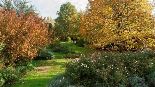 I Giardini Segreti sbocciano anche in autunno