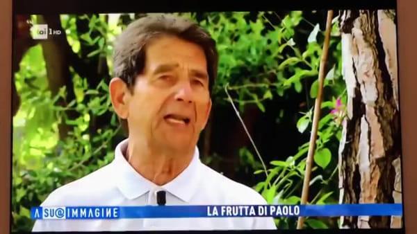 Regala buste di frutta ai passanti: il cuore grande di Paolo finisce in tv - VIDEO