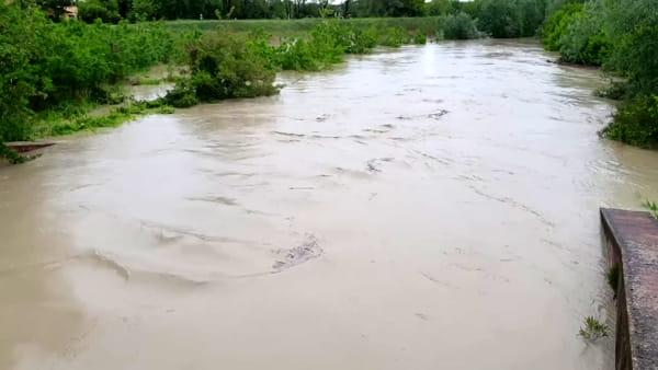 La pioggia gonfia i fiumi: acqua alta anche nel Senio - VIDEO