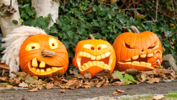 Aspettando Halloween si prepara una zucca mostruosa