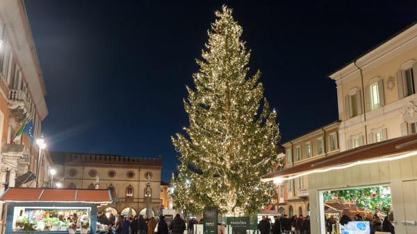 Le feste si accendono in piazza con l'albero di Natale e tanta musica